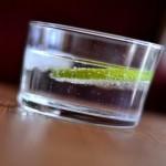 gin a tonic